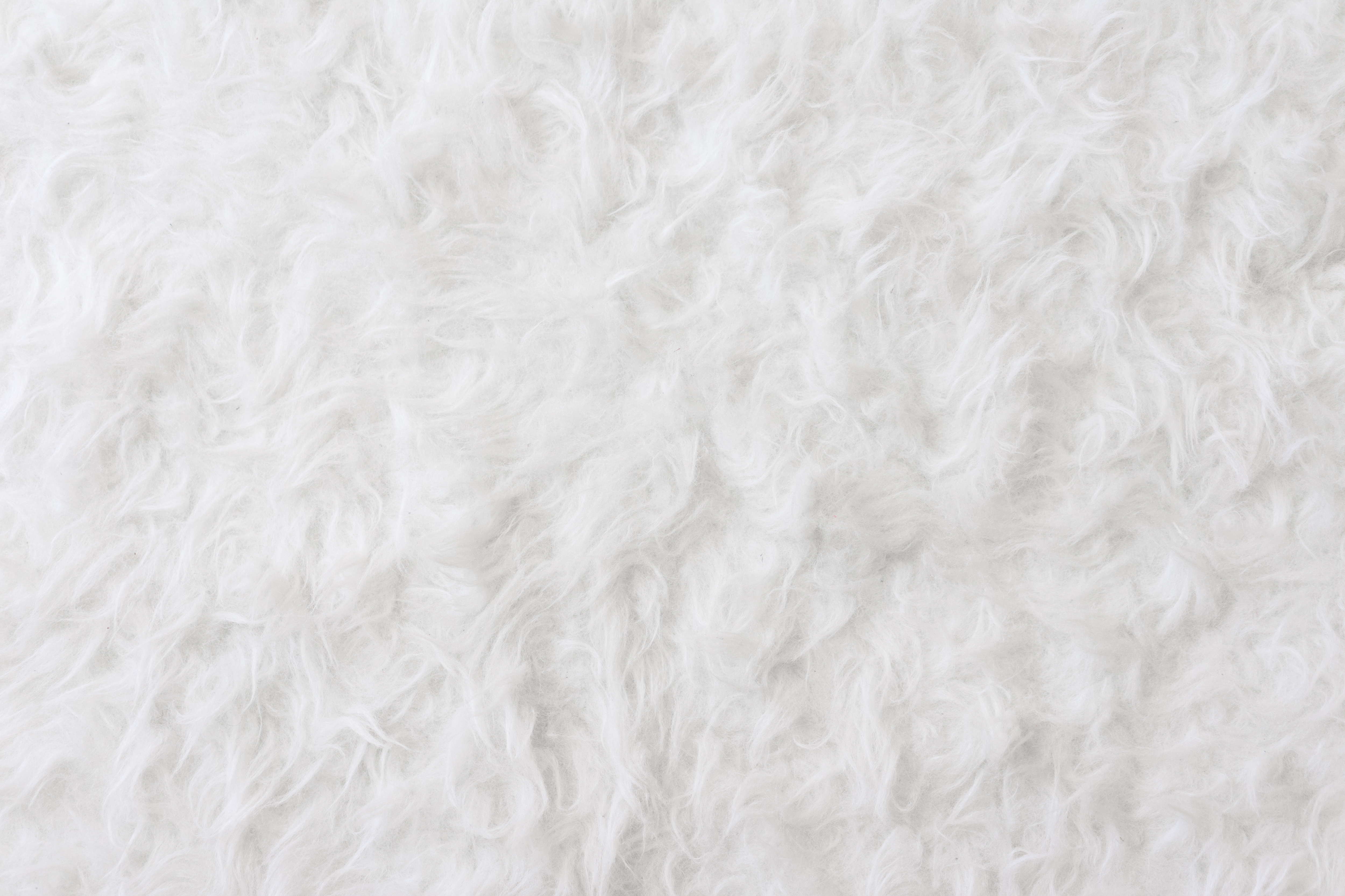white-eco-fur-pattern-background-picjumbo-com.jpg